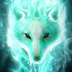 Wolf2.0